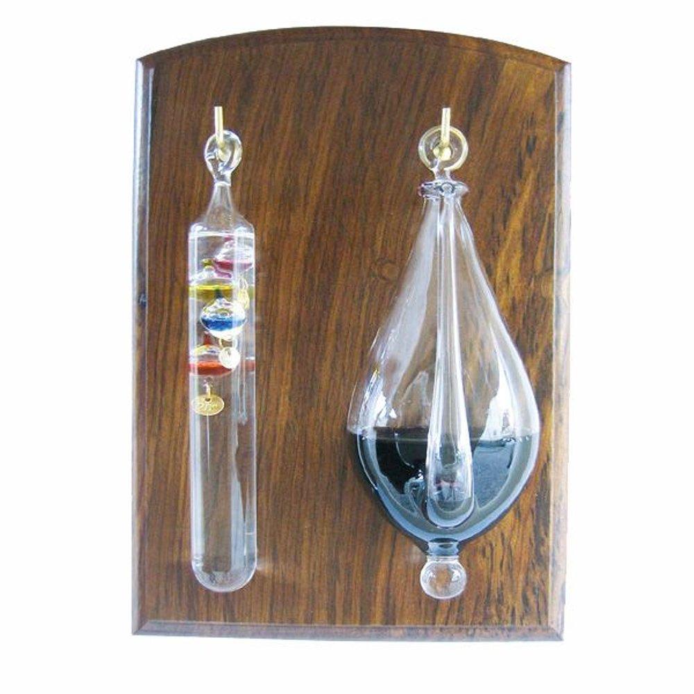 g4617 gallilei thermometer und wetterglas goethe. Black Bedroom Furniture Sets. Home Design Ideas
